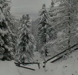 prosegue-il-caldo-in-europa,-diventa-fredda-l'alaska