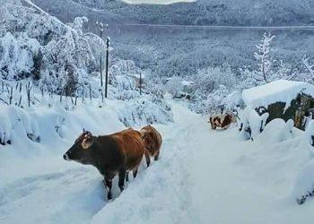 turchia,-la-via-della-neve!-foto-e-video