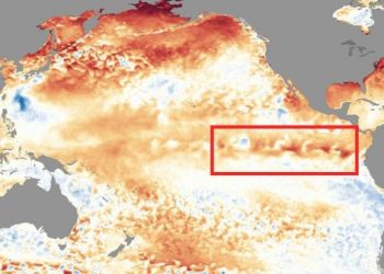 ritorno-di-el-nino,-sempre-piu-probabile-in-inverno.-quali-effetti-meteo?