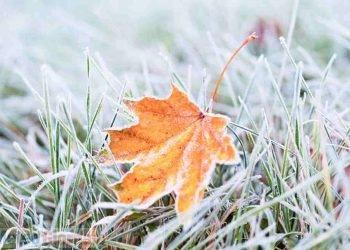 ondata-di-gelo-record-dalla-russia:-era-fine-novembre-del-1988