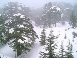 """il-libano-e-la-neve:-un-matrimonio-che-""""s'ha-da-fare"""""""