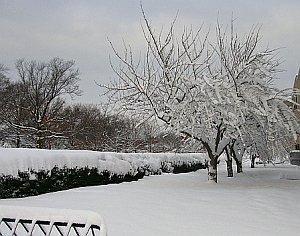 ricordando-un-inverno-indimenticabile-per-le-eccezionali-nevicate-sugli-stati-uniti