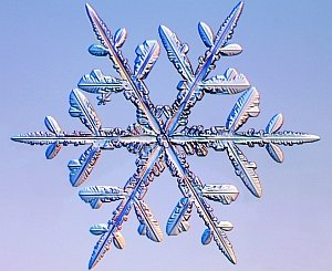 fiocchi-di-neve-per-la-prima-volta-simulati-con-successo-al-computer