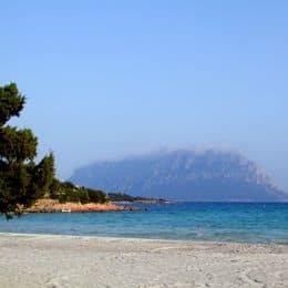 Costa a Sud di Olbia, veduta dell'Isola Tavolara, solo qualche giorno fa. Foto di Andrea Meloni.