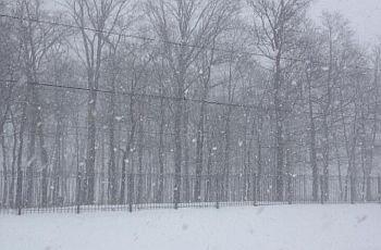 La nevicata dell'11 febbraio a Mosca, una delle maggiori dell'intero inverno. Da twitter/@BBCDanielS